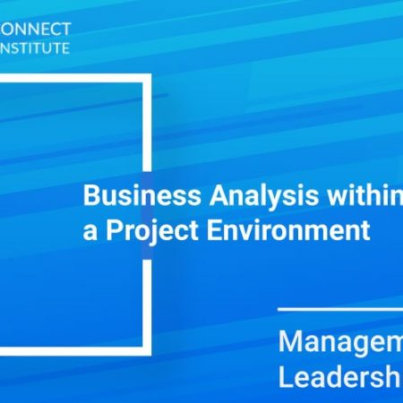 Business Analysis within a Project Environment Training