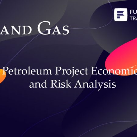 Petroleum Project Economics and Risk Analysis Training