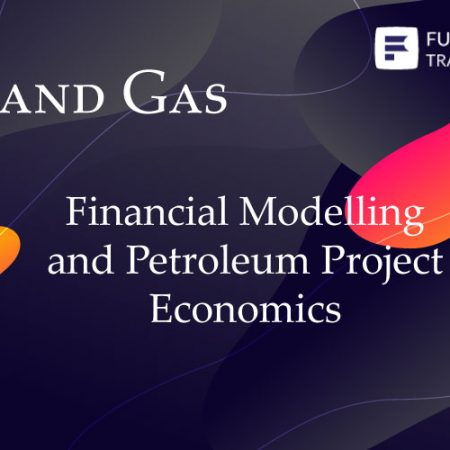 Financial Modelling and Petroleum Project Economics Training