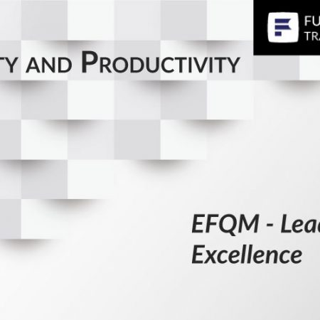 EFQM – Leaders for Excellence Training
