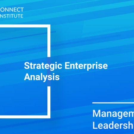 Strategic Enterprise Analysis Training